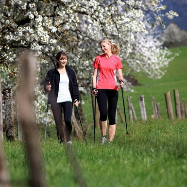 Nordic Walking | © TVB PillerseeTal